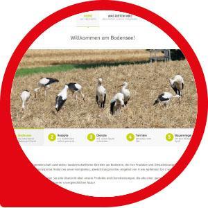 Webdesign, Webprogrammierung, Homepage, Website, Webagentur am Bodensee
