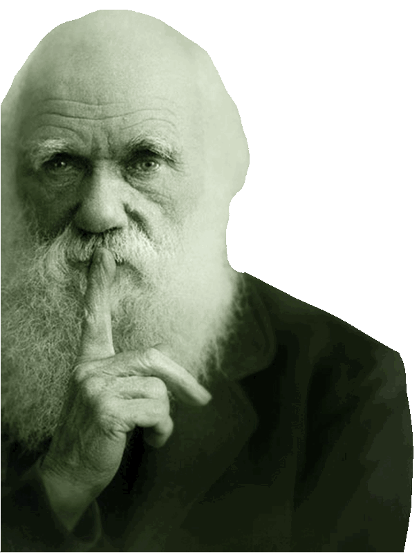 digitaler_darwinismus